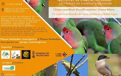 Censo coordinado de aves exóticas