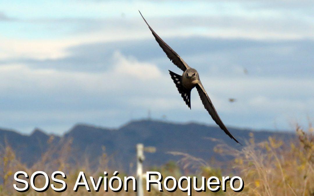 SOS Aviones Roqueros, guía para poner a salvo un avión roquero durante una ola de frío