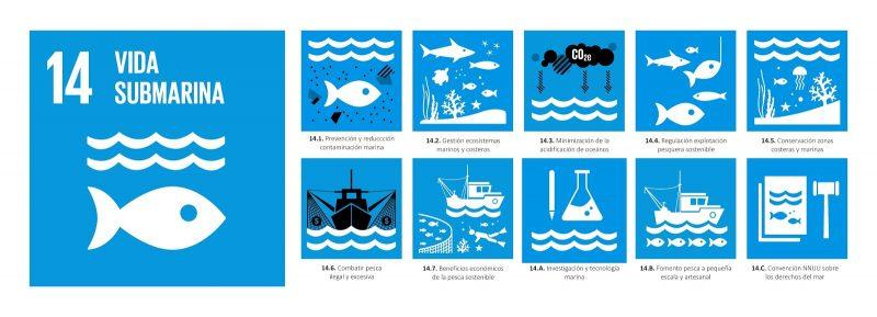 Vida Submarina Faunatura
