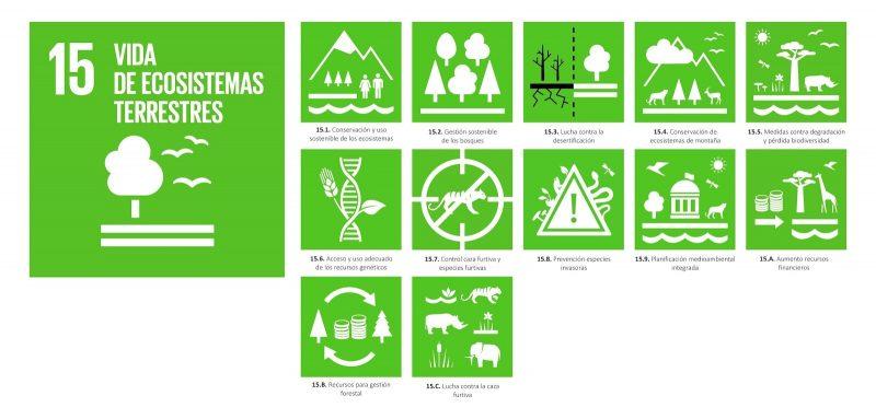 Vida de Ecositemas Terrestres Asociación Faunatura